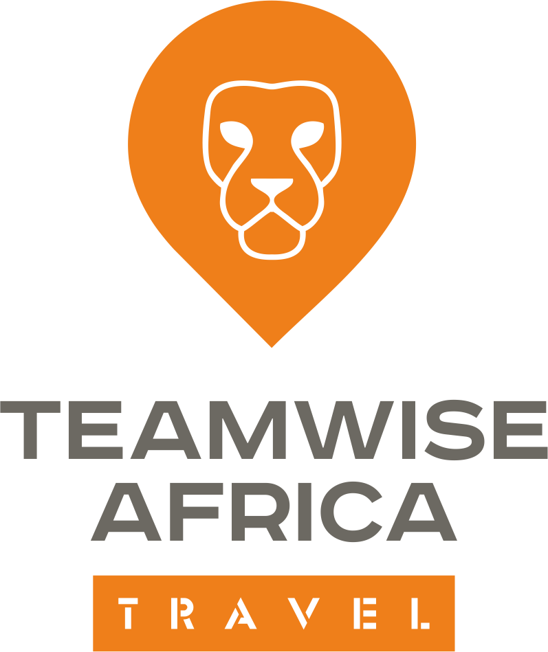 TeamWise Africa1